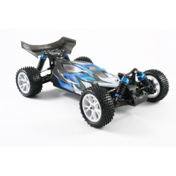FTX Carnage 1/10 4WD Brushless Truggy RTR with 2.4Ghz Radio System and Waterproof Electrics
